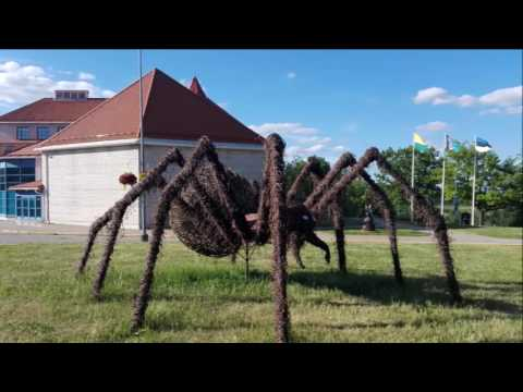 A pilgrimage to Bulgaria; Ep #4 cycling Viljandi - Kark-Nuia -Helme (Estonia)