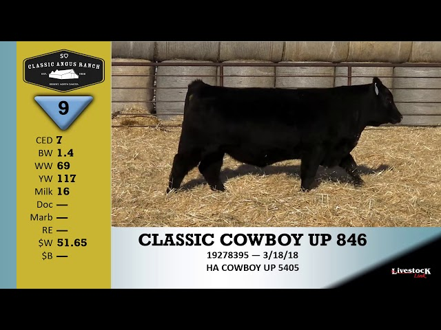 Classic Angus Ranch Lot 9