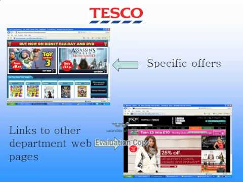 MAN2056  2010 Group #75 Tesco's Integration of Information Systems