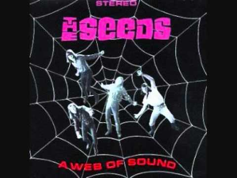 The Seeds - Just Let Go