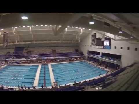 NCAA Division II Swimming Championship 2015