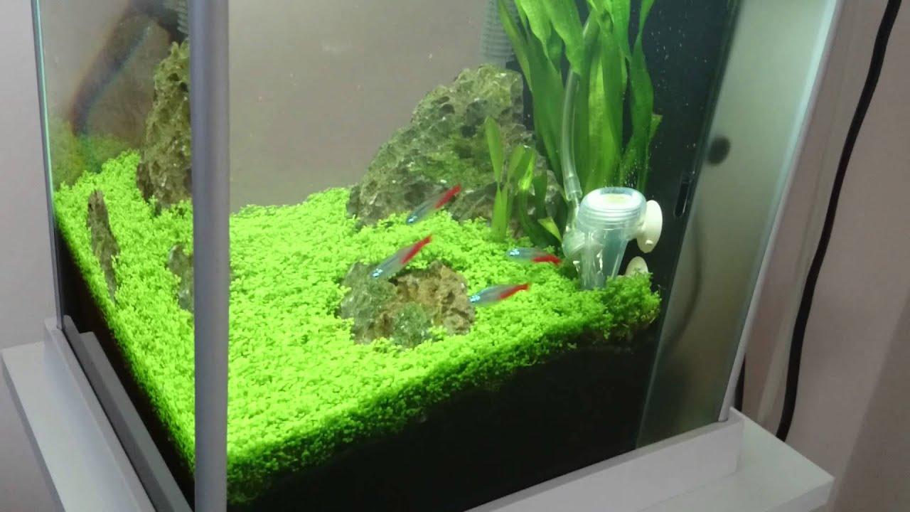 Fluval Spec 3 Nano Plant 10 Liter Tank