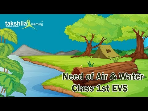 Need of air and water cbse class st evs also video lectures rh youtube