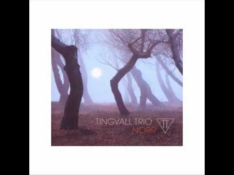 Tingvall Trio - Grrr (Norr 2008).wmv