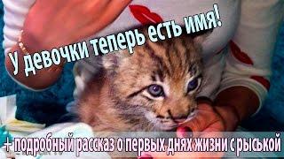 Дали нашей рыське имя!)) Ну и хорошенько облизали в честь этого события))
