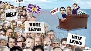 Referendum vs Plebiscite | Tools of Direct Democracy | Tiny Info