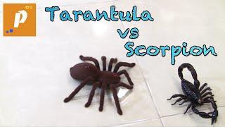 Распаковка обзор огромного скорпиона на пульте управления Unboxing rc scorpion vs tarantul