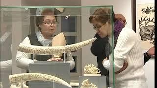 В Ярославском художественном музее открылась выставка «Увезу тебя я в тундру»