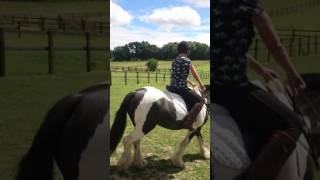 how to stop a Horse Napping