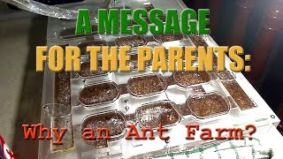 Why have an Ant Farm? This video is a breakdown on what to expect when entering the ant keeping hobby for parents of kids wanting an ant farm or for adults ...