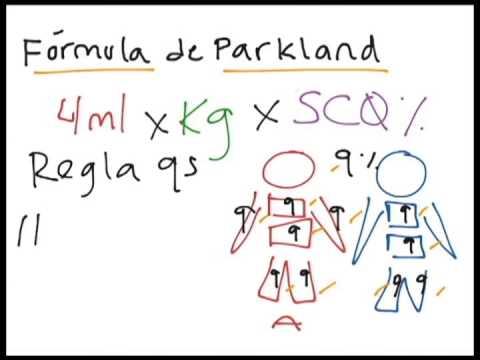 formula de parkland pdf