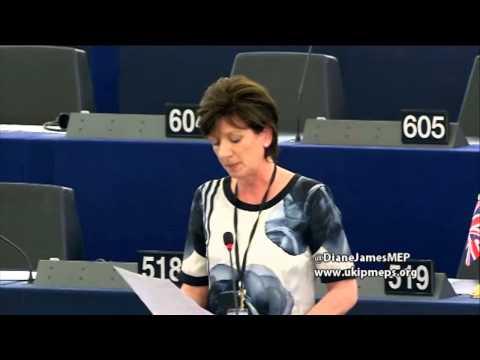 EU's 'Smart Border Package' needs smarter internal border strategy - UKIP MEP Diane James