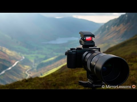 Olympus EE-1 Dot Sight Review with the M.Zuiko 300mm f/4