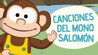 Canciones del Mono Salomón | Toobys