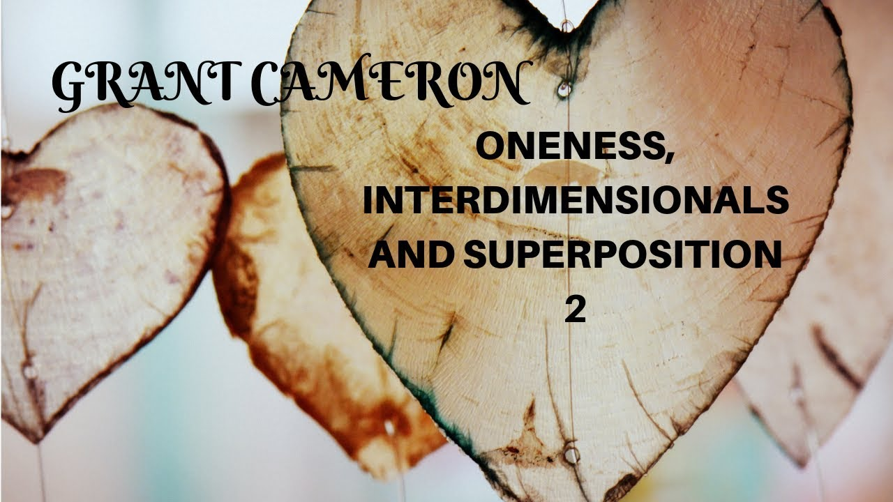 VIDEO - GRANT CAMERON - Contact with Interdimensional Beings - Yossi Ronen - part 2