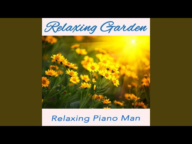 Lotus Flower Instrumental Relaxing Piano Man Shazam