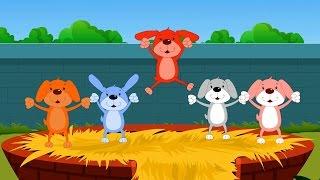 Пять маленьких щенков