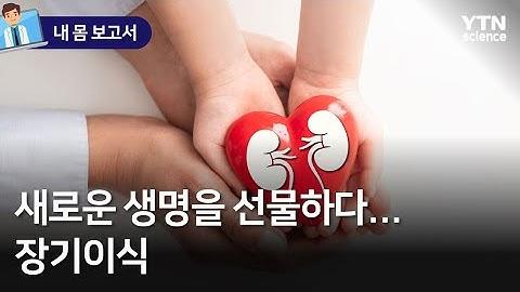 [내 몸 보고서] 새로운 생명을 선물하다…장기이식 / YTN 사이언스