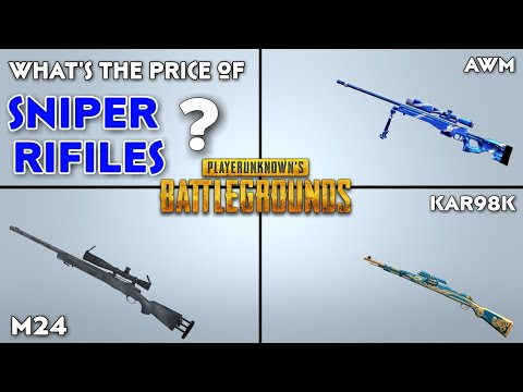 Pubg Sniper Real Price In India Pubg Snipers Fact In Real Life