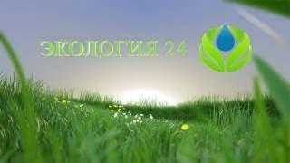 Экология 24