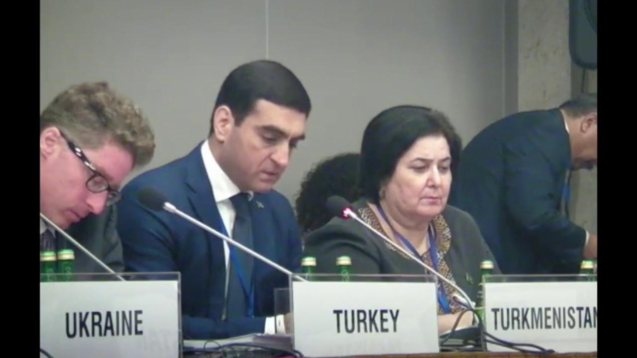 Download Выступление Туркменистана на HDIM 2016