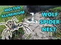 Molten Aluminium Casting: WOLF SPIDER/TRAP DOOR SPIDER NEST