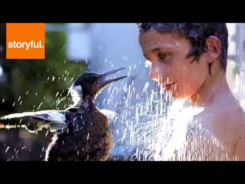 Boy Shares Shower With Friendly Magpie Pet (Storyful, Wild Animals)