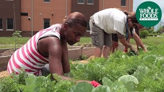 Garden Project at the Healing Place:  Louisville, Kentucky | Produce | Whole Foods Market