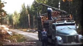 Timmerbilar till 1000