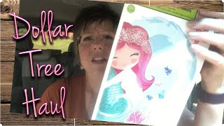 DOLLAR TREE HAUL | NEW FINDS | VARIOUS ITEMS | SEPTEMBER 26, 2019