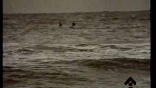 ДДТ - Последняя осень (Official video)