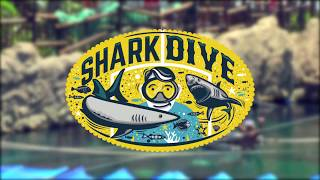 uShaka Xpanda Shark Dive - Sea Animal Encounters I...