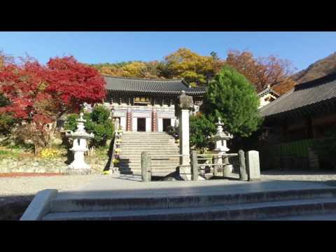 Ssanggyesa Temple Thumbnail