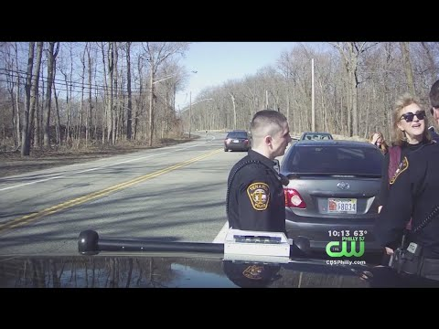 Former Port Authority Official Caught On Video Cursing At Police During Traffic Stop