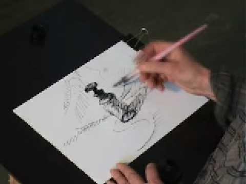 Expozitie de pictura Carmen from YouTube · Duration:  6 minutes 28 seconds