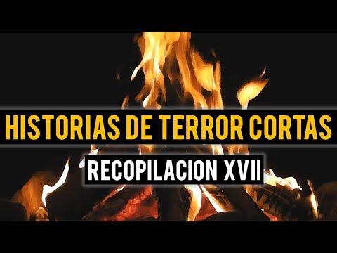 HISTORIAS DE TERROR CORTAS XVII (RECOPILACIÓN DE RELATOS DE TERROR)