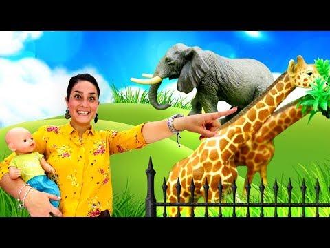 Video e giochi con bambole. Nenuco va allo zoo. Giocattoli educativi