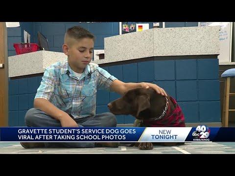 Scott Davidson - #GoodNews: Elementary School Gives Service Dog Spot In Yearbook