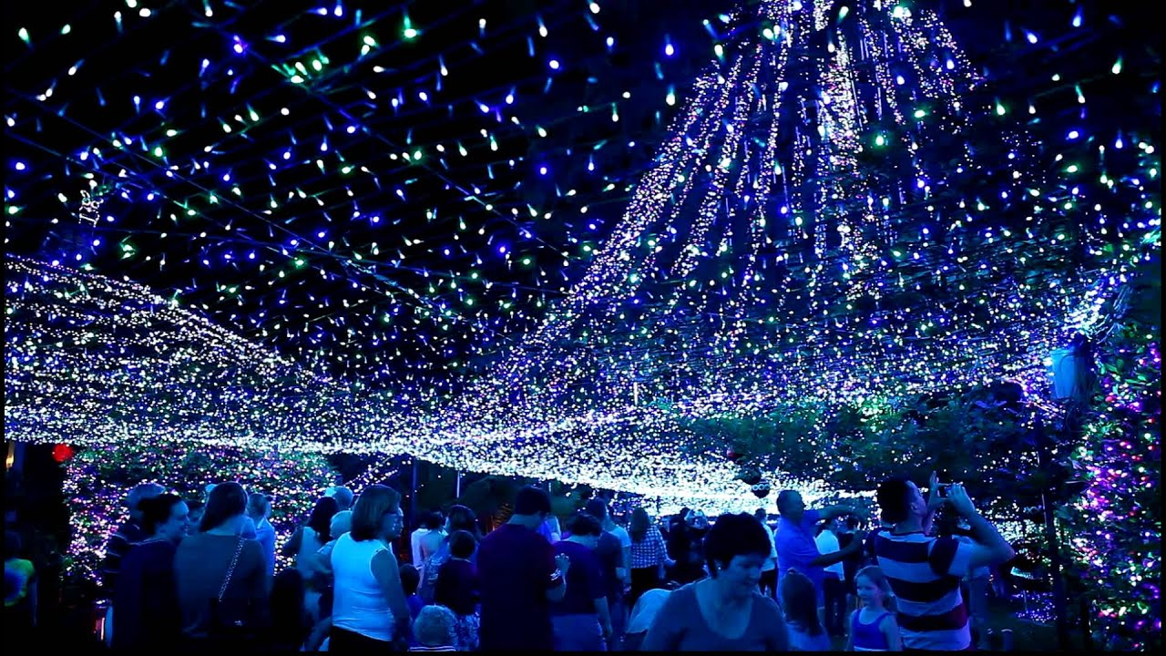Projecteur Led Exterieur Christmas Lights In Canberra - Youtube