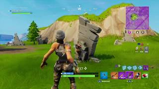 Fortnite insane troll