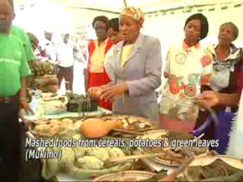 the world food day mpeg4