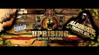 Uprising SK presents: Alborosie Tribute Mix 2010 part 1