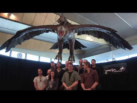 Behind the Scenes at Weta Workshop - Making Eagles