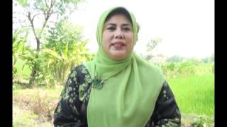 [BELAJAR CEPAT METODE HANIFIDA] : Dr. Khoirotul Idawati Mahmud, M.Pd.I