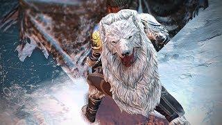Path of Exile: Polar Cloak