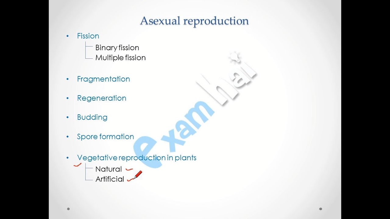 Asexual reproduction in plants regeneration movie