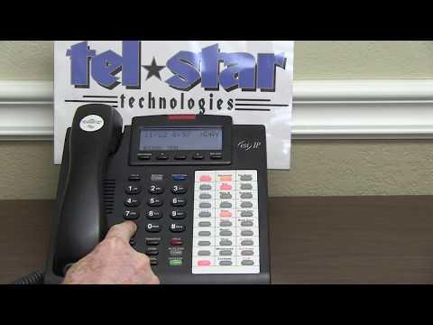 ESI phone system holiday mode