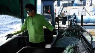 Bajak laut Marlargo Indonesia di kapal portugal