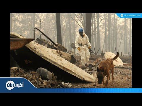 ارتفاع ضحايا الحرائق في كاليفورنيا إلى 59 قتيلاً و130 مفقودا  - نشر قبل 9 ساعة