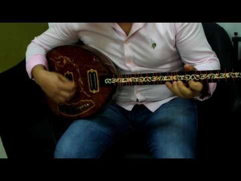 UNOS::  KURDISH STRING INSTRUMENT  ELECTRIC BOUZOUK BUZUQ   NEW !!!!!!!!!!!!